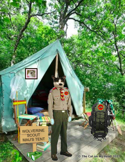 Golden Years of Camping with Mau
