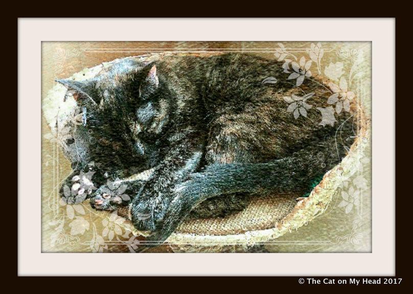 Astrid's Vintage-Inspired Caturday Art