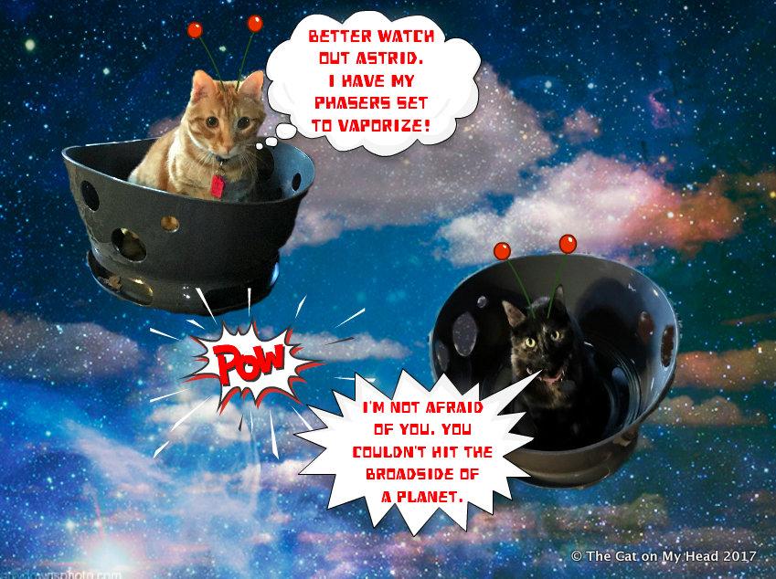 Battle of the Alien Cats.