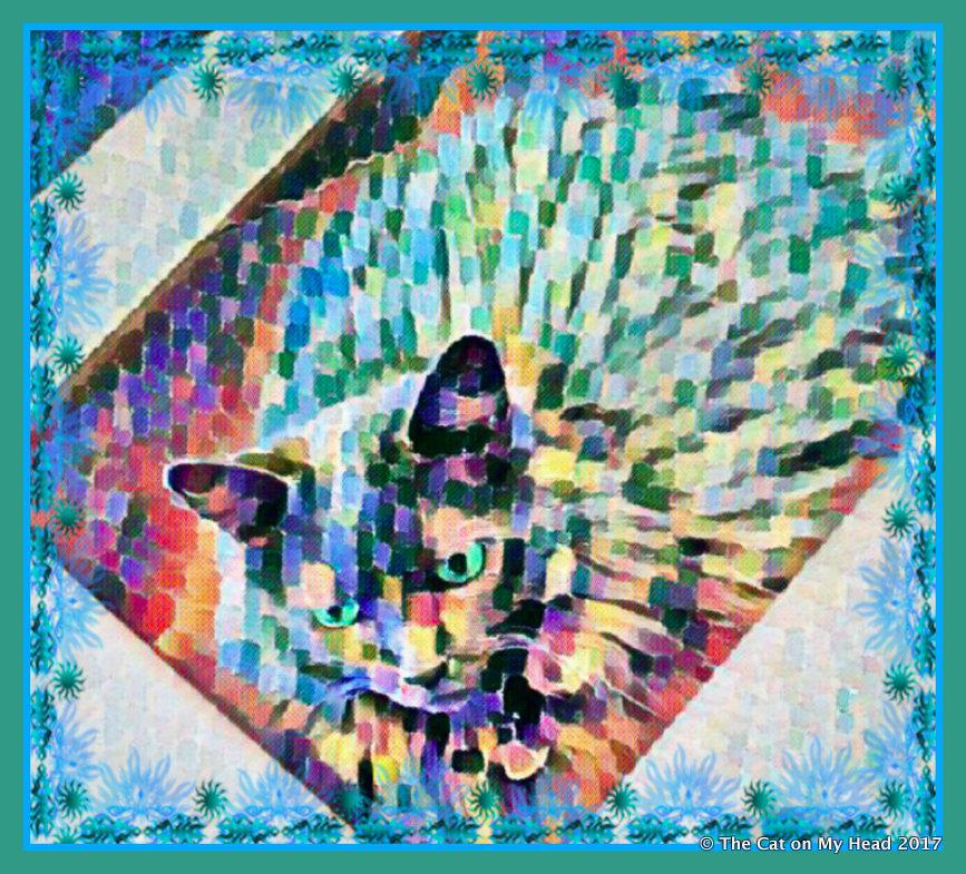 Caturday Art...Giulietta in a box.