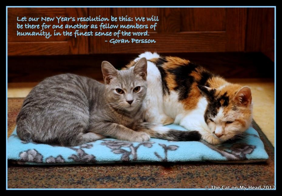 Sawyer and Lily Olivia - Friendship