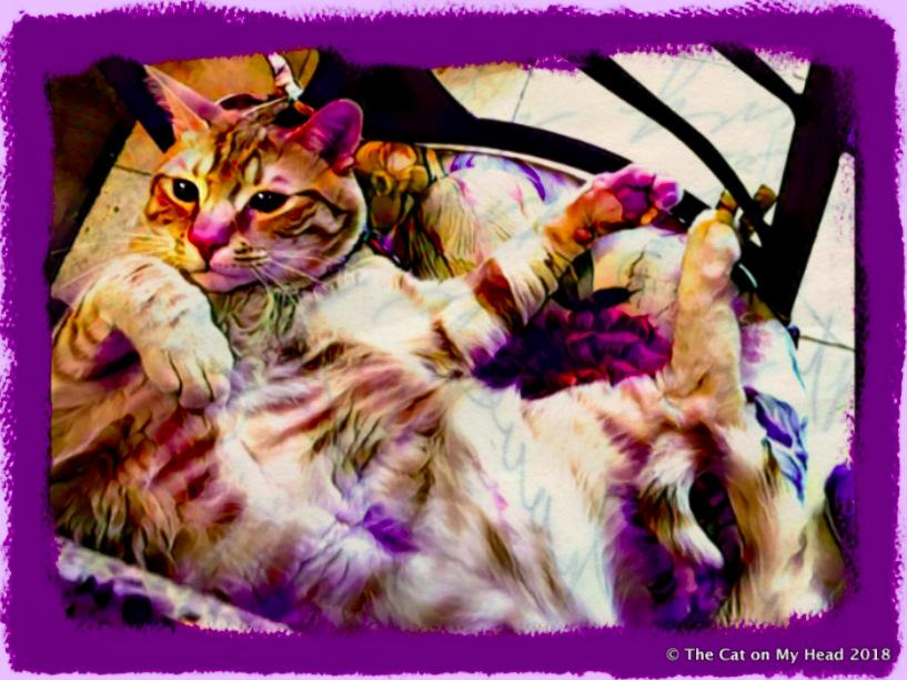 Cooper Murphy's Purple Period Art.