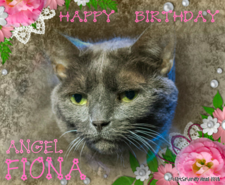 Angel Fiona's Birthday Selfie