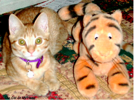 MacKenzie (2001) & Tigger - Friendly Fill-Ins