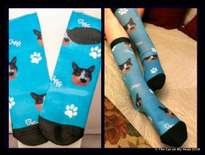Customizable Cat Sock giveaway.