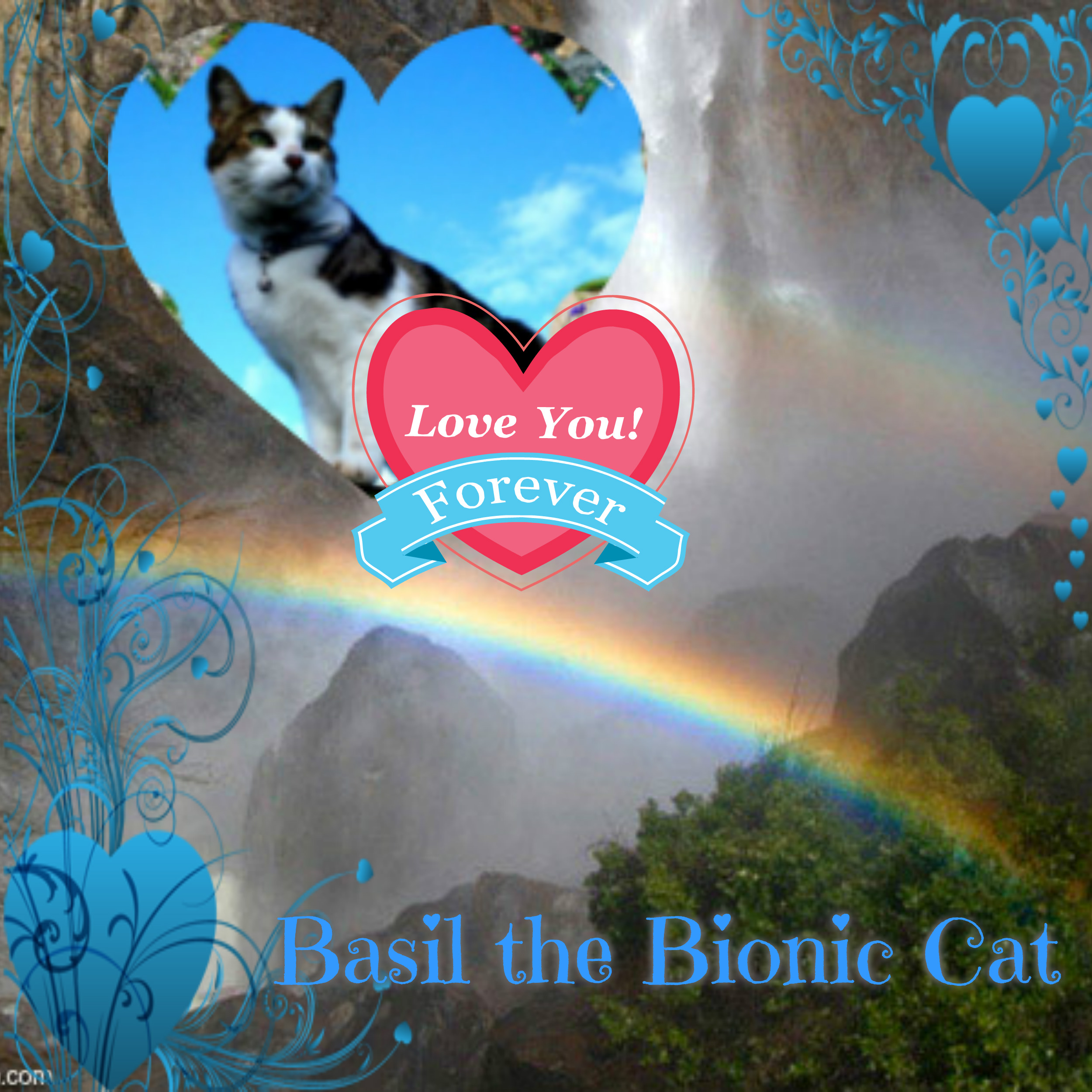 Image result for bionic basil farewell