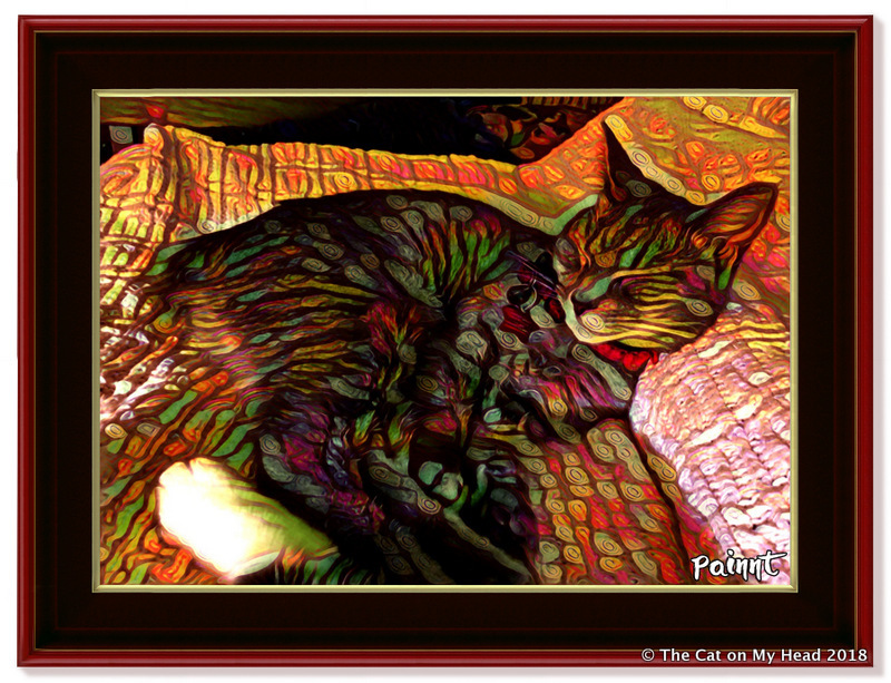 Caturday Art: Thick Paint/Prominence