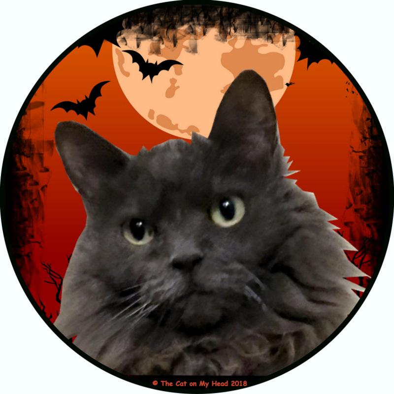 Halloween Giulietta - 2018