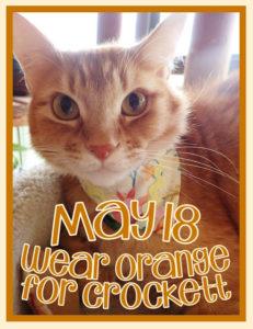 Wear Orange for Crockett