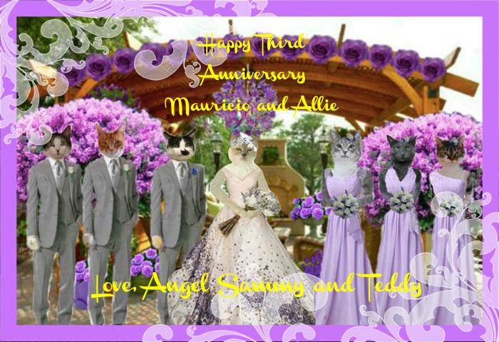 3rd anniversary - Allie & Mau