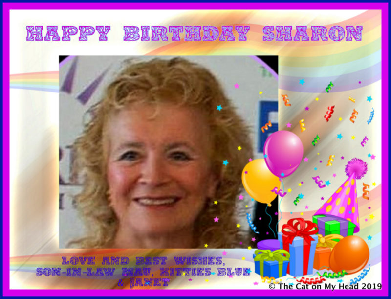 happy birthday Sharon