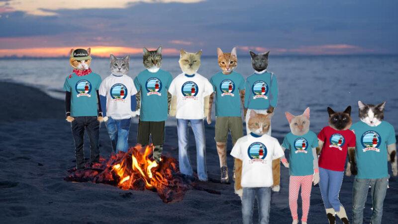 Cat Scouts