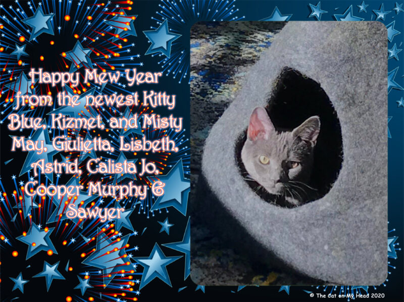 Happy Mew Year