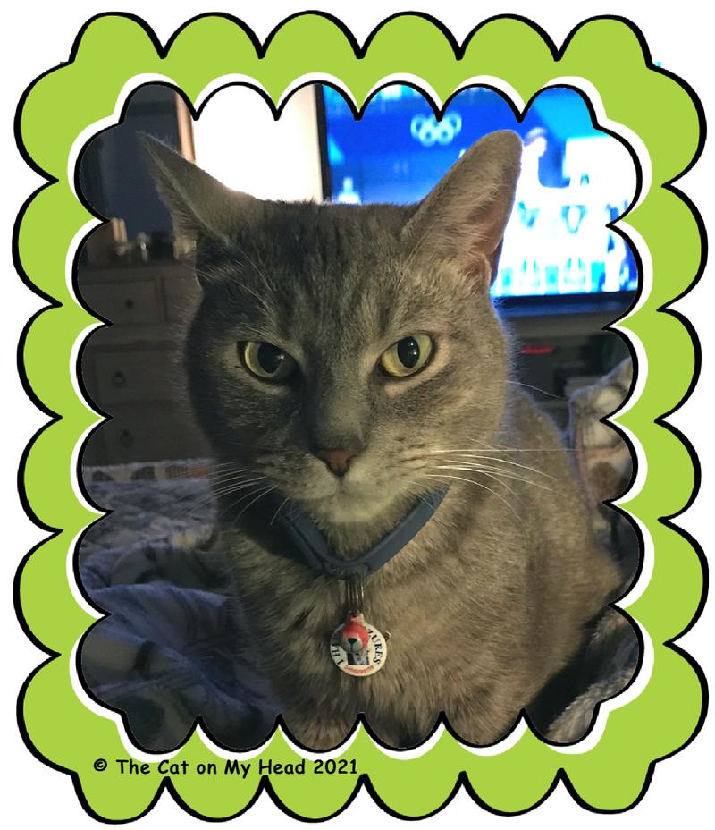 International Cat Day Selfie