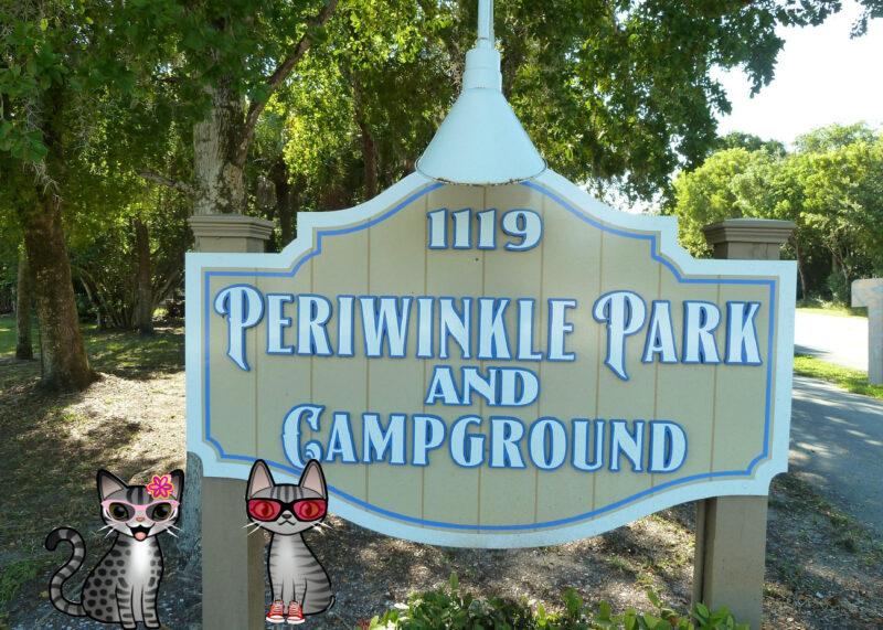 periwinkle & stinky
